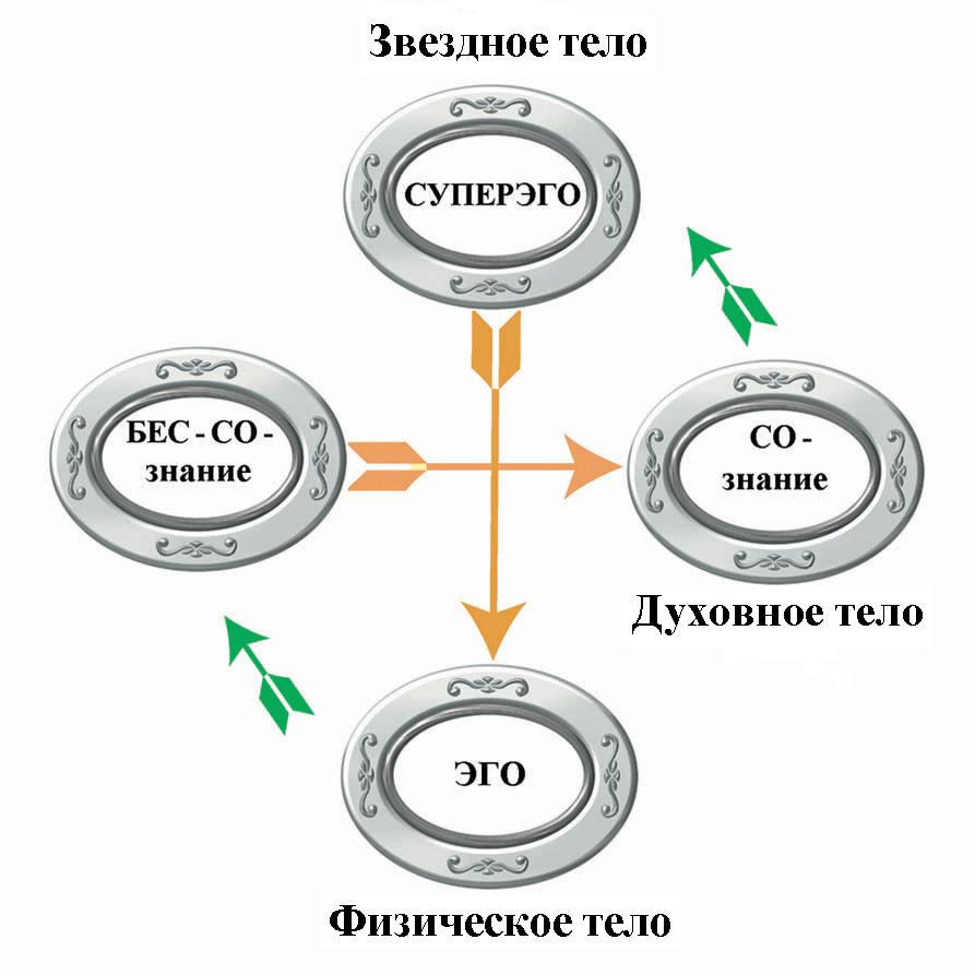 схема,отражающая функции и свойства денег